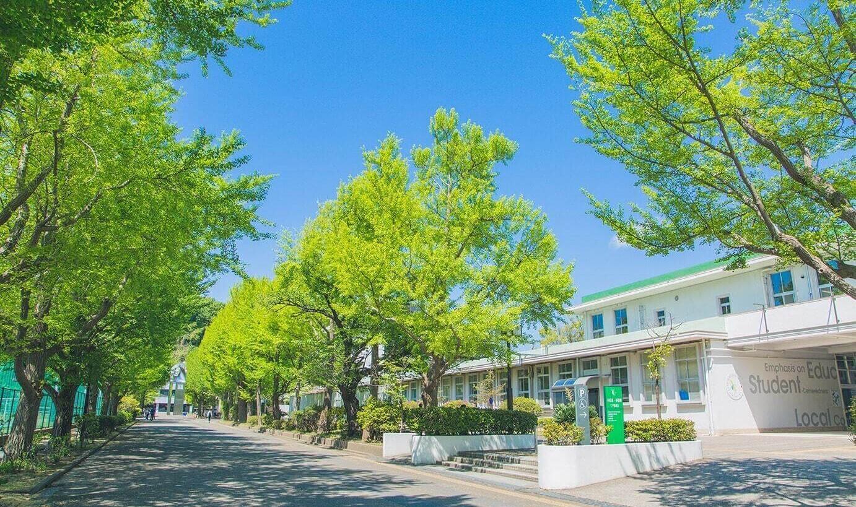講座 東京 大学 育成 データ の サイエンティスト