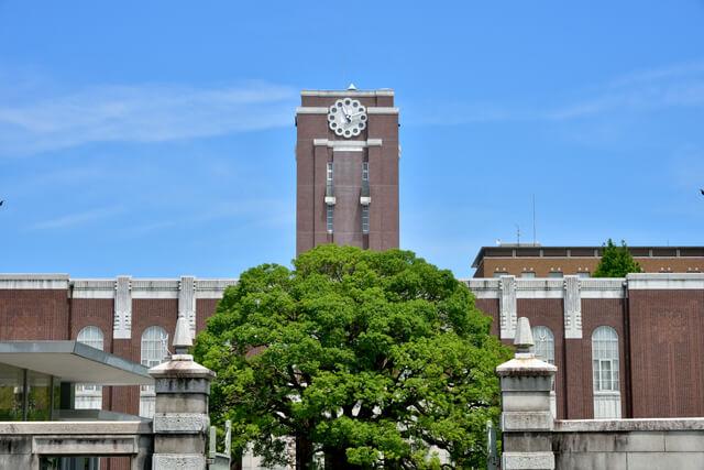 大学薬学部